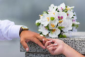 Rings on hands of young couple in love — Stock Photo