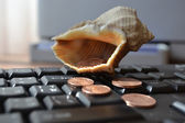 Keyboard with shell — Stock Photo