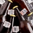 Beer bottles. - Stock Photo