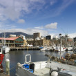 Hobart Constitution Docks — Stock Photo