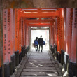 Torii Gate Tunnel — Stock Photo