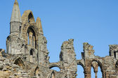 Close-up of the Whitby Abbey gothic ruins — Stock Photo