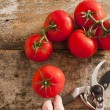 Freshly harvested ripe red grape tomatoes — Stockfoto