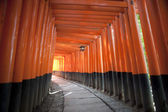 Tunnel of red torii gates — Stock Photo