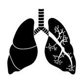 Poumons en noir et blanc — Vecteur