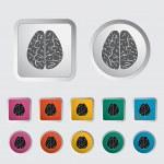 Brain. — Stock Vector