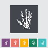 Anatomy hand — Stock Vector