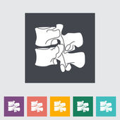 Anatomy spine flat icon. — Stock Vector
