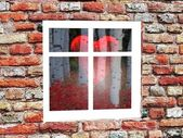 The reflection in the window of the heart — Stock Photo