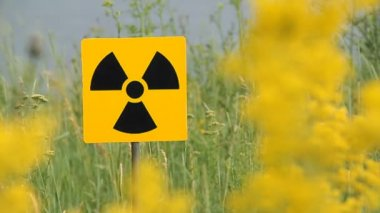 Radiation, warning symbol. Field of a yellow grass.Radioactivity Sign.
