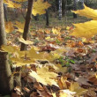 Autumn tree. — Видео