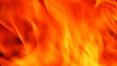 Fire. — Stock Video