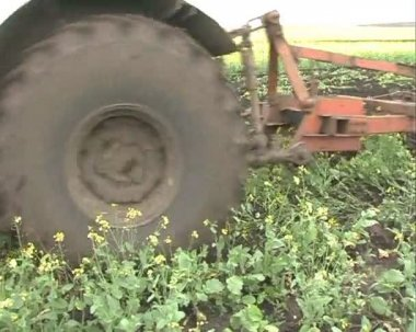 The Tractor plows the land. — Stock Video