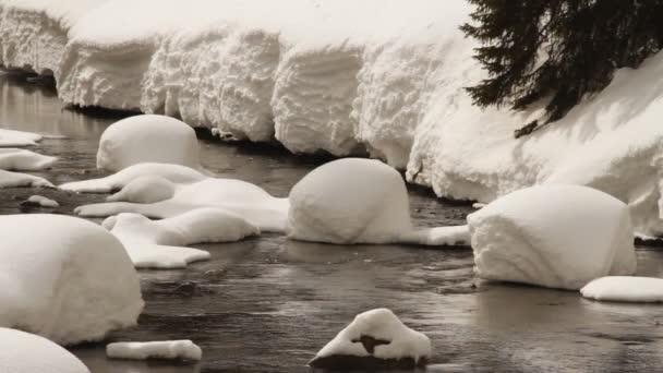 Río de invierno. — Vídeo de stock