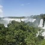 Iguassu falls — Stock Photo #23551987