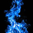 Blue Fire on a black background — Stock fotografie