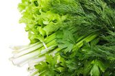 Fresh vegetables. Fennel, parsley, onion, lettuce. — Stock Photo