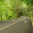 Stock Photo: Asphalt road in park