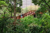 Park in hong kong — 图库照片