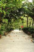 Park near buddhist temple — Foto de Stock
