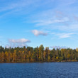 The island on the wood lake — Stockfoto
