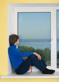 Landscape behind a window — Stock Photo