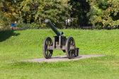 Old cannon in the park — Stock Photo