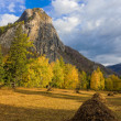 Sunny autumn landscape — Stock Photo