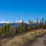Road on pass — Stock Photo #2706529