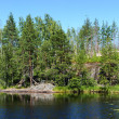 Forest lake — Stock Photo #29631303