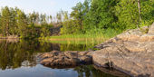 Shore of forest lake — Stock Photo