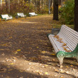 Benches in a park — Stock Photo