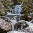 Mountain river among the rocks — Stock Photo