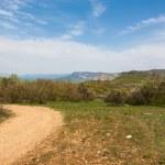 Spring landscape — Stock Photo #42033385