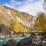 Mountain river in autumn — Stock Photo #46404795