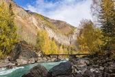 Górskie rzeki jesienią — Zdjęcie stockowe