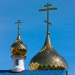 Gold domes — Stock Photo #6769937