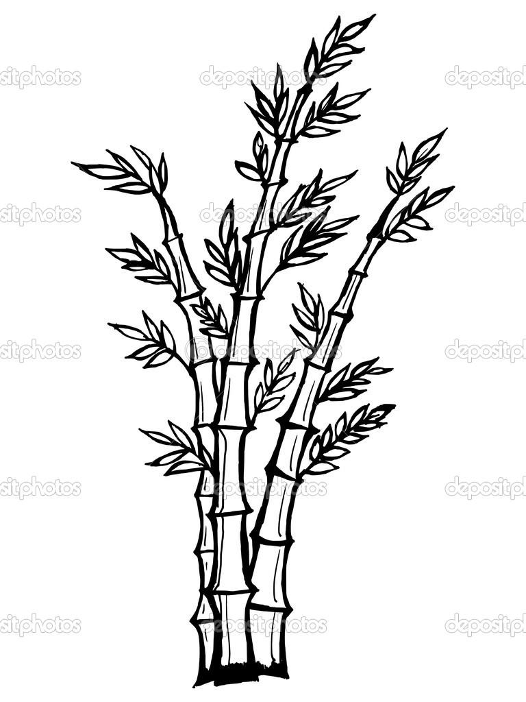 矢量,竹子的卡通插图