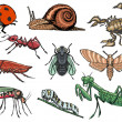 Set of insects — Stock Vector #45241379