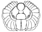 Scarab beetle — Stock Vector