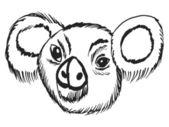 Head of koala — Stock Vector
