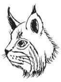 Lynx — Vecteur