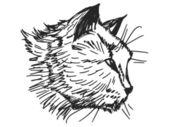 Ritratto di gatto — Vettoriale Stock