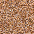 Stock Photo: Buckwheat ready to eat. Background