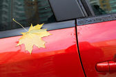 Autumn maple leaf as a label stuck to the car — Stock Photo