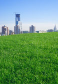 City. Construction of the skyscraper. Blue sky. Lawn. — Stock Photo