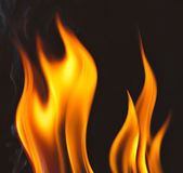 Fire flames. Bonfire on a dark background — Stock Photo