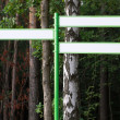 Directional arrows in forest — Stock Photo #28744627