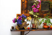 Still life from different flowerpots on shelf — Stock Photo