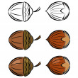 Stock Vector: Cartoon set of vector images of hazelnut and acorn. eps10
